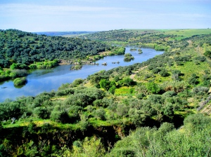 Desassoreamento do rio Guadiana preparado por Mértola