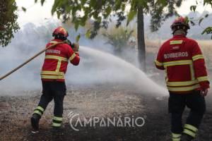 Incêndio perto de Elvas mobiliza 3 dezenas de bombeiros