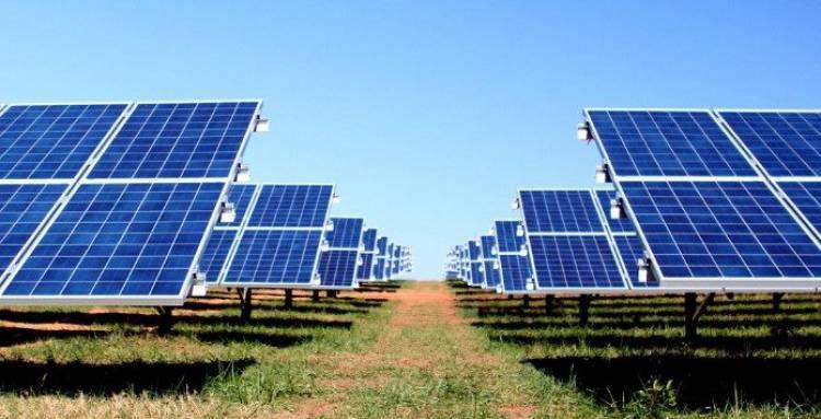 EDIA investe na minimização dos impactos de central solar no património cultural do Baixo Alentejo