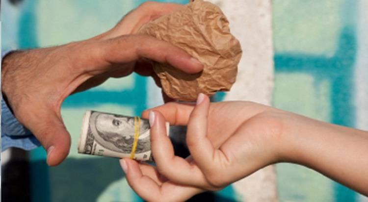Investigação desenrolada em Portalegre permite apreender mais de 20 milhões de euros em droga