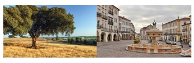 Conhece bem o Alentejo? Descubra aqui dez curiosidades sobre a maior Região Portuguesa