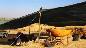 Direção-Geral do Património Cultural propõe a Ministro da Cultura que declare Complexo Arqueológico dos Perdigões em Reguengos como Património Nacional
