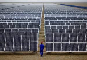 EDIA investe 34 mil euros para minimizar impactos de central fotovoltaica em Serpa