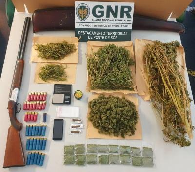Ponte de Sor: Homem de 54 anos detido por tráfico de droga