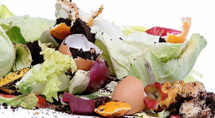 Évora vai implementar projeto-piloto de recolha de Resíduos Urbanos Biodegradáveis