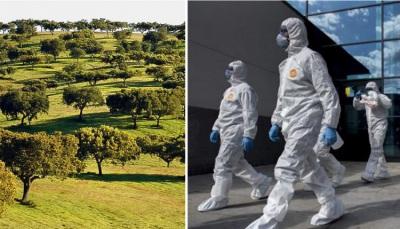 COVID-19/Dados DGS: Alentejo regista mais 577 casos e 15 mortes