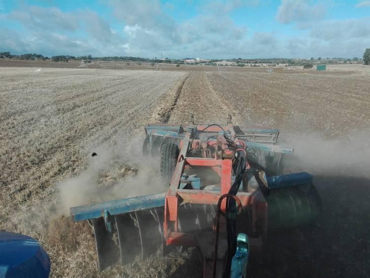 """Comissão de Monotorização dos Efeitos da Seca diz que """"recursos das explorações para rega não são suficientes para fazer face às necessidades hídricas das culturas"""""""