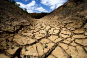 Baixo Alentejo é a região mais penalizada pela seca