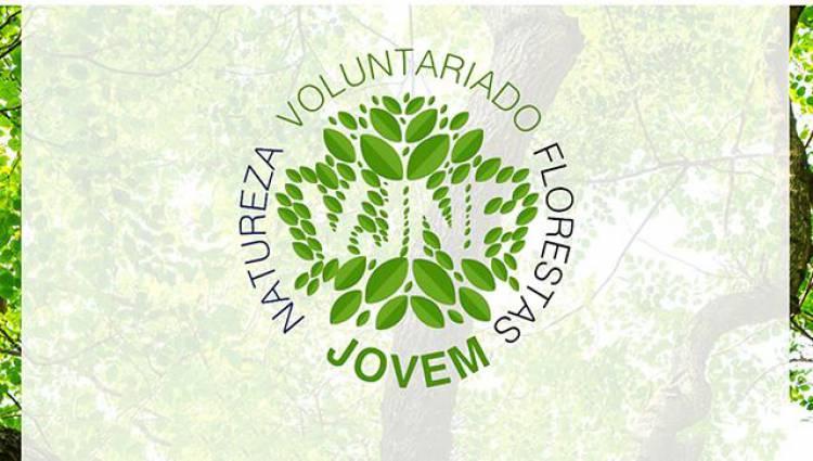 Alandroal: Inscrições abertas para o Voluntariado Jovem para a Natureza e Florestas