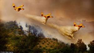Dos 12 aviões de combate a incêndios contratados pelo Governo, 3 vêm para o Alentejo