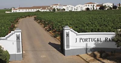 Grupo João Portugal Ramos lança primeiro vinho de sobremesa