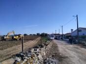 Olival superintensivo em Veiros - Estremoz ameaça a saúde pública
