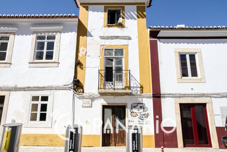 Com a criação do Instituto de Estudos Florbelianos, Tiago Salgueiro procura apoio de mecenas para Casa-Museu Florbela Espanca em Vila Viçosa (c/som)
