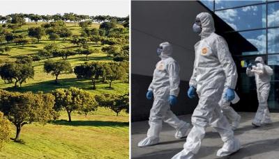 COVID-19/Dados DGS: Alentejo regista 65 novos casos e três mortes