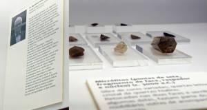 Museu do Crato dedica espaço ao investigador Agostinho F. Isidoro