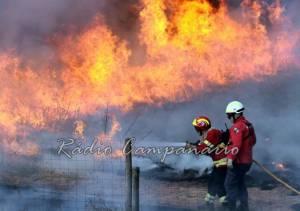 Incêndio ativo no concelho de Nisa mobiliza quase 30 operacionais