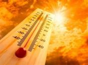 Nisa e Gavião estão esta quinta-feira com risco máximo de incêndio