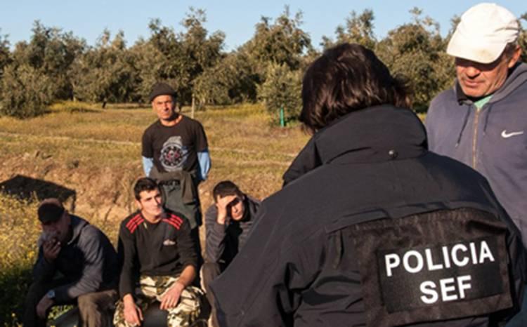 """Casos de exploração laboral no Alentejo têm números """"irreais"""", diz diligente sindical (c/som)"""