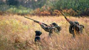 """Se o preço da carta de caçador e de licenças """"estivesse facilitado para os jovens, haveria mais candidatos"""", diz presidente da Fencaça (c/som)"""