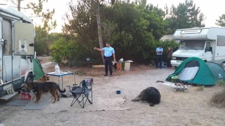 GNR identifica 29 acampamentos ocasionais ilegais em Grândola