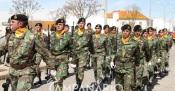 Covid-19: Fronteira cancela comemorações dos 636 anos da Batalha de Atoleiros