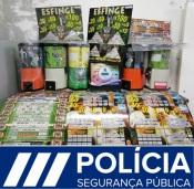 PSP de Elvas termina com casos de jogo ilegal em estabelecimentos do concelho