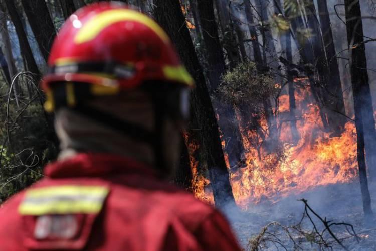 Incêndio em Gavião dado como dominado ao início da manhã