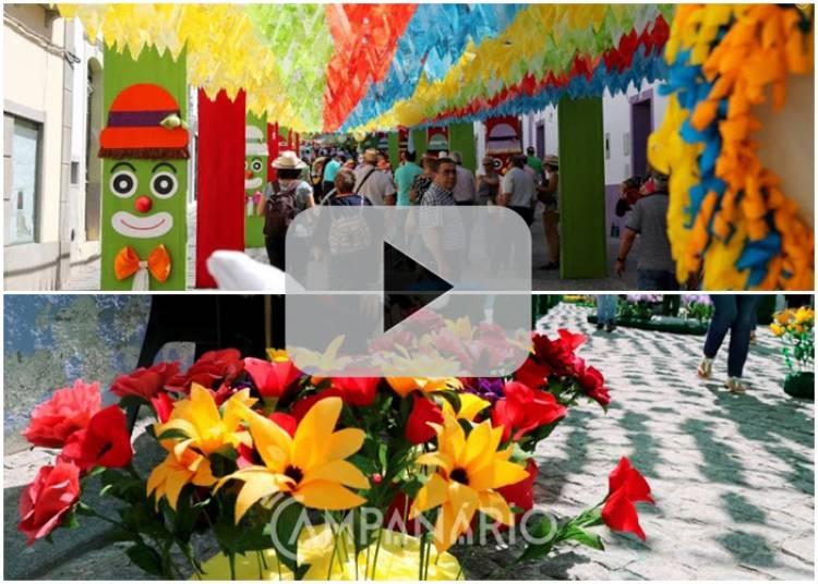 Redondo: Ruas Floridas 2019 - Um mundo de cores e de arte. Veja aqui o vídeo