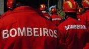 Bombeiros, forças de segurança e titulares de órgãos de soberania vacinados contra a covid 19 na próxima semana