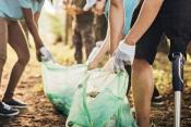 """IPDJ: Estão abertas as candidaturas ao programa """"Voluntariado Jovem para a Natureza e Florestas"""""""