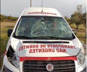 Ambulância dos Bombeiros de Nisa colide com animal e fica inoperacional
