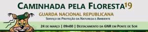 """Guarda Nacional Republicana de Portalegre organiza """"Caminhada pela Floresta 2019"""""""