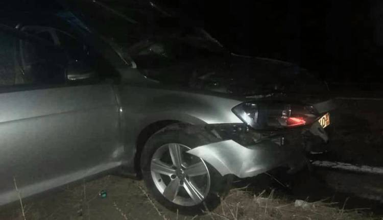 Beja: Automóvel destruído após colisão com vara de javalis. Condutor fica ferido e 8 animais morreram