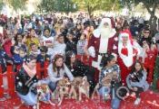 """Élia Quintas, vice-presidente da CM de Reguengos, """"este ano o Natal em Reguengos de Monsaraz tem algumas particularidades e algumas mudanças em relação a anos anteriores"""". (c/som e fotos)"""
