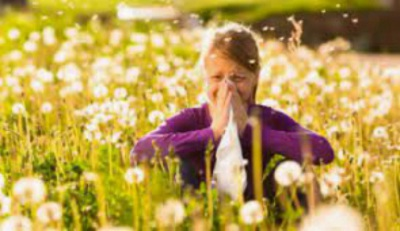 Conheça aqui os níveis de pólen em Évora para esta semana!