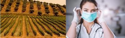 COVID-19: Mais 8 novos casos confirmados no Alentejo. São já 93 infetados na região