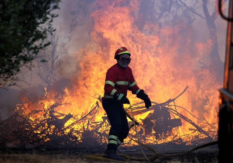 Incêndios: Nos primeiros seis meses do ano arderam no Alentejo 223 hectares