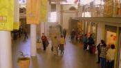 COVID-19: Trabalhadores do Mercado Municipal Évora com testes negativos