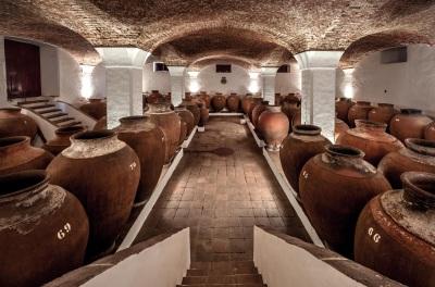 Livro sobre história e tradições dos vinhos portugueses fez sucesso antes de ser publicado