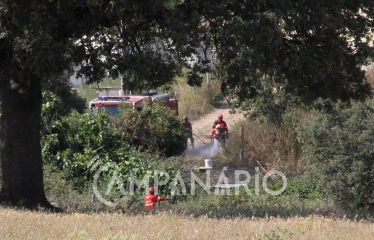 Vila Viçosa: Incêndio na Herdade das Arengozinhas mobilizou cerca de 30 operacionais de quatro corporações (c/fotos)