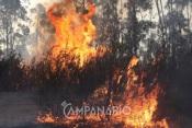Santiago do Cacém: Incêndio de grandes dimensões dado como dominado