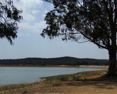 COVID-19: Évora e Arraiolos interditam acesso à área circundante da albufeira do Divor