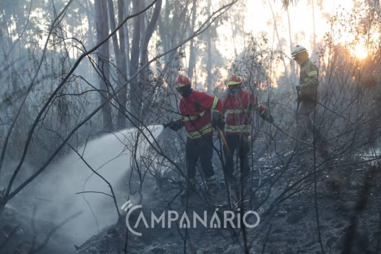Reativação de fogo em Odemira dominado por mais de 100 bombeiros