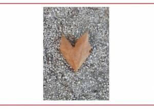 """Estremocense desafia """"a ver com o coração"""" com a exposição 'Serendipidade'"""