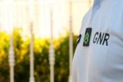 97 infrações rodoviárias, 8 crimes e 2 acidentes, registados pela GNR esta segunda feira, no distrito de Évora (c/som)