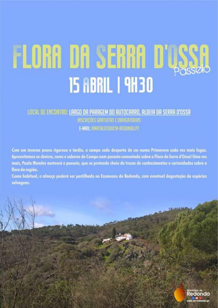 Município de Redondo realiza passeio pedestre pela Serra D'Ossa