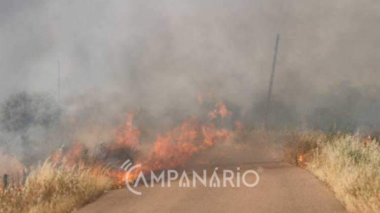 Incêndio em Almodôvar mobilizou cerca de 2 dezenas de operacionais