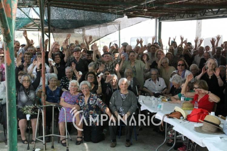 Dezenas de idosos de Borba comemoraram Dia da Espiga com piquenique (c/som e fotos)