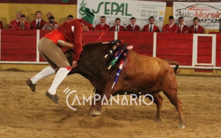 Em Monforte houve touros e emoção. Veja as imagens da corrida de touros (c/fotos)