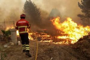 Mais de meia centena de operacionais e 2 meios aéreos combatem incêndio perto de Estremoz